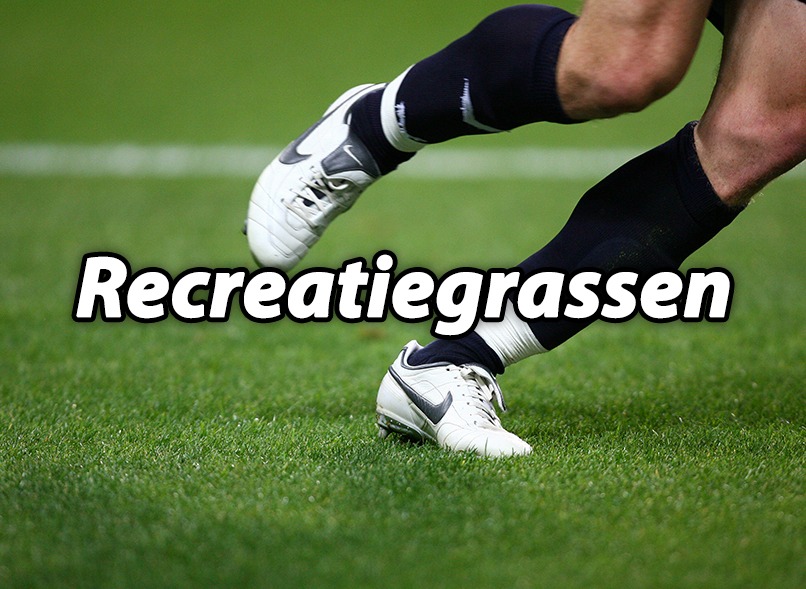 Recreatiegrassen